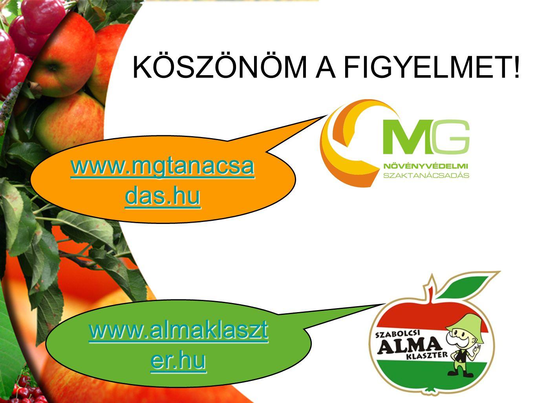 KÖSZÖNÖM A FIGYELMET! www.mgtanacsadas.hu www.almaklaszter.hu