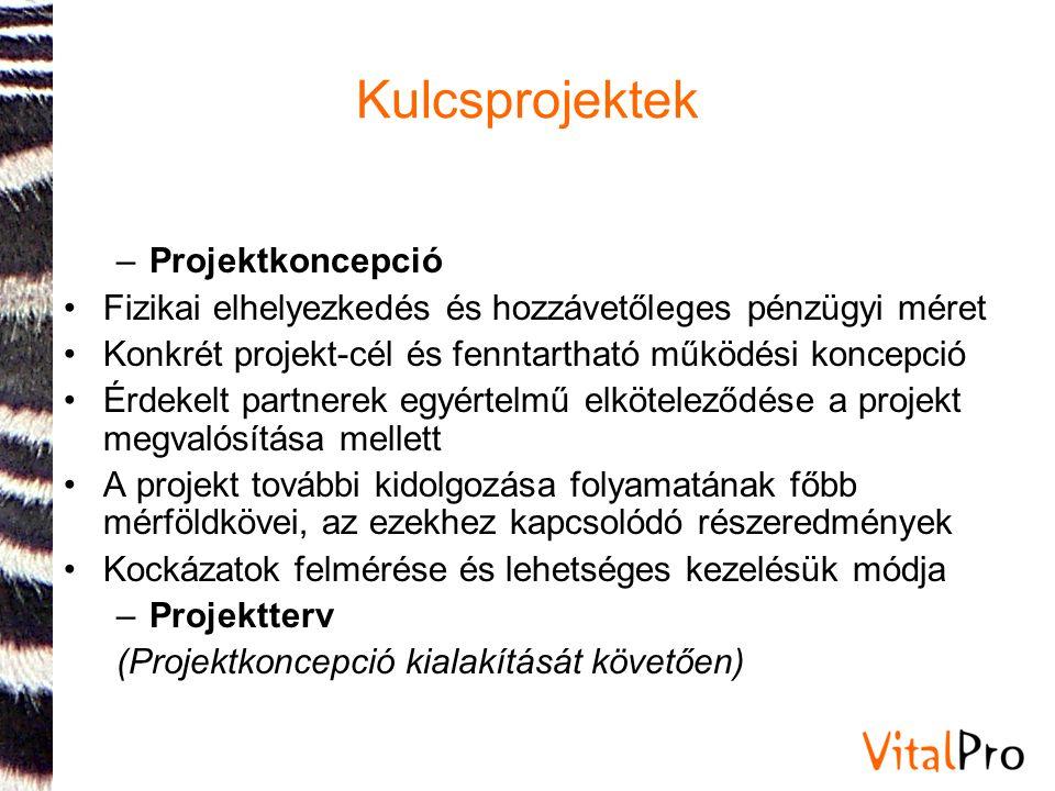 Kulcsprojektek Projektkoncepció