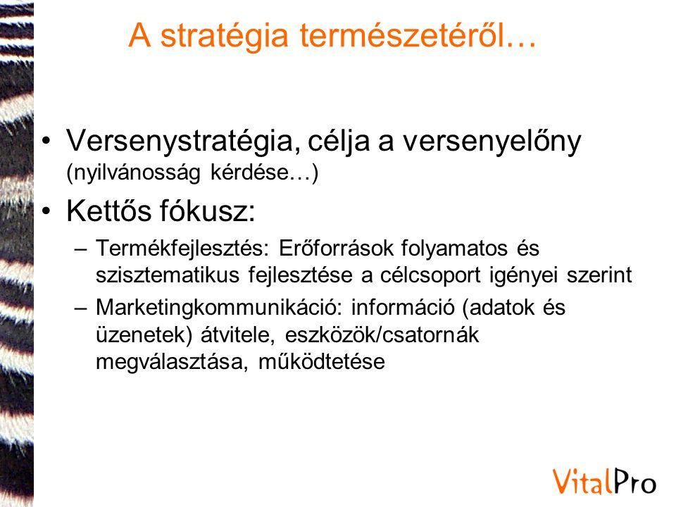 A stratégia természetéről…