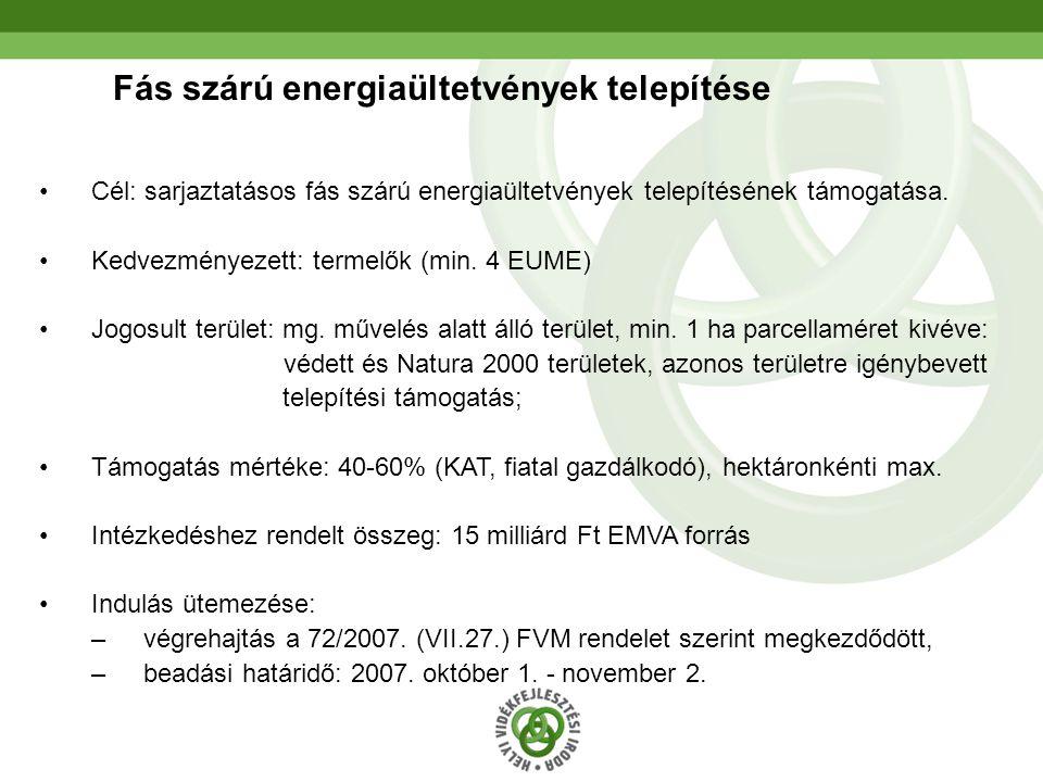 Fás szárú energiaültetvények telepítése