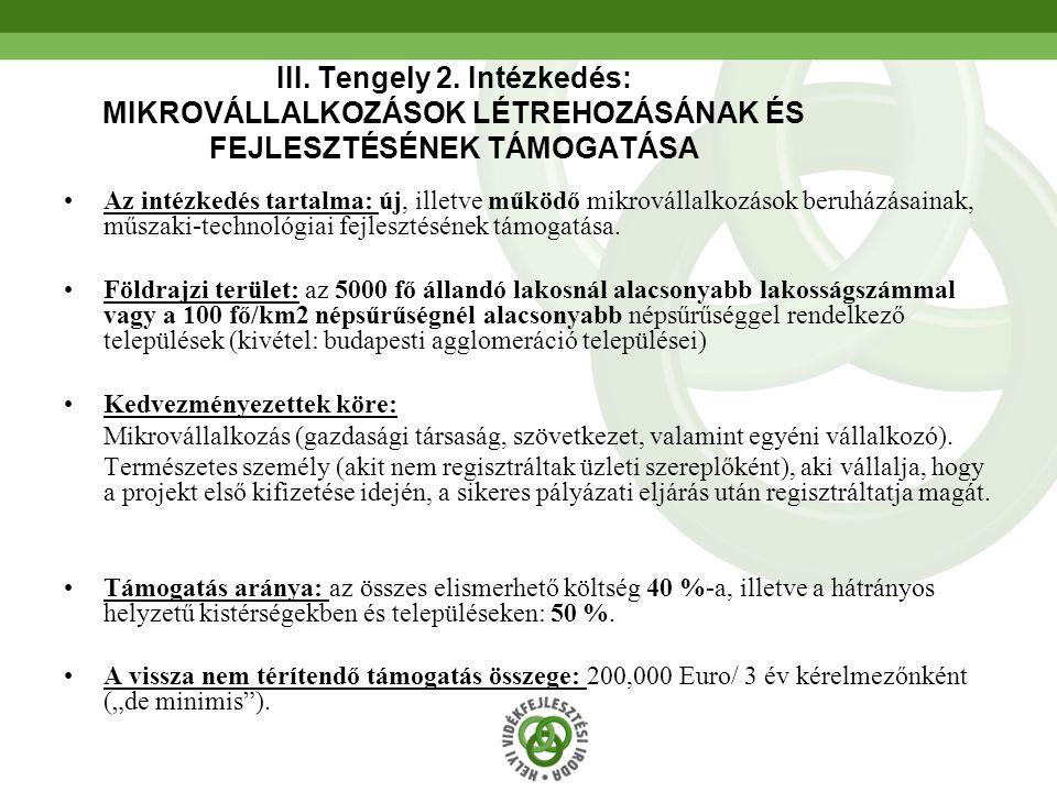 III. Tengely 2. Intézkedés: MIKROVÁLLALKOZÁSOK LÉTREHOZÁSÁNAK ÉS FEJLESZTÉSÉNEK TÁMOGATÁSA