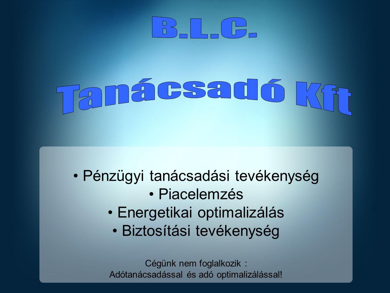 B.L.C. Tanácsadó Kft Pénzügyi tanácsadási tevékenység Piacelemzés