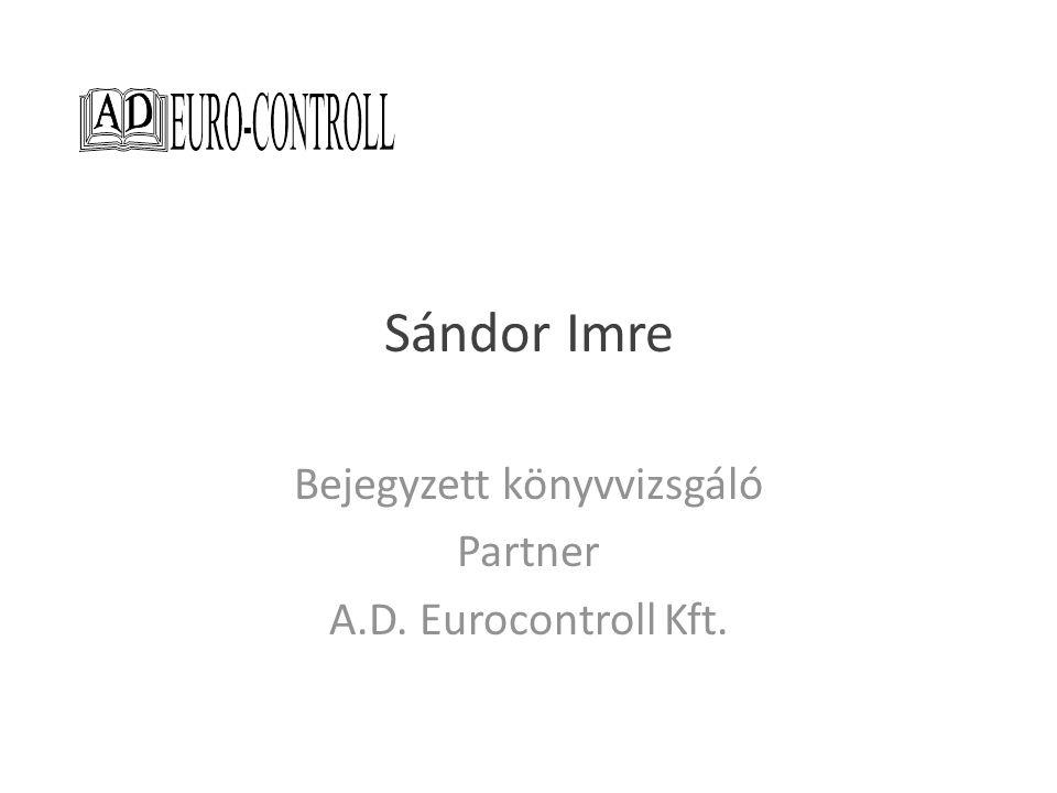 Bejegyzett könyvvizsgáló Partner A.D. Eurocontroll Kft.