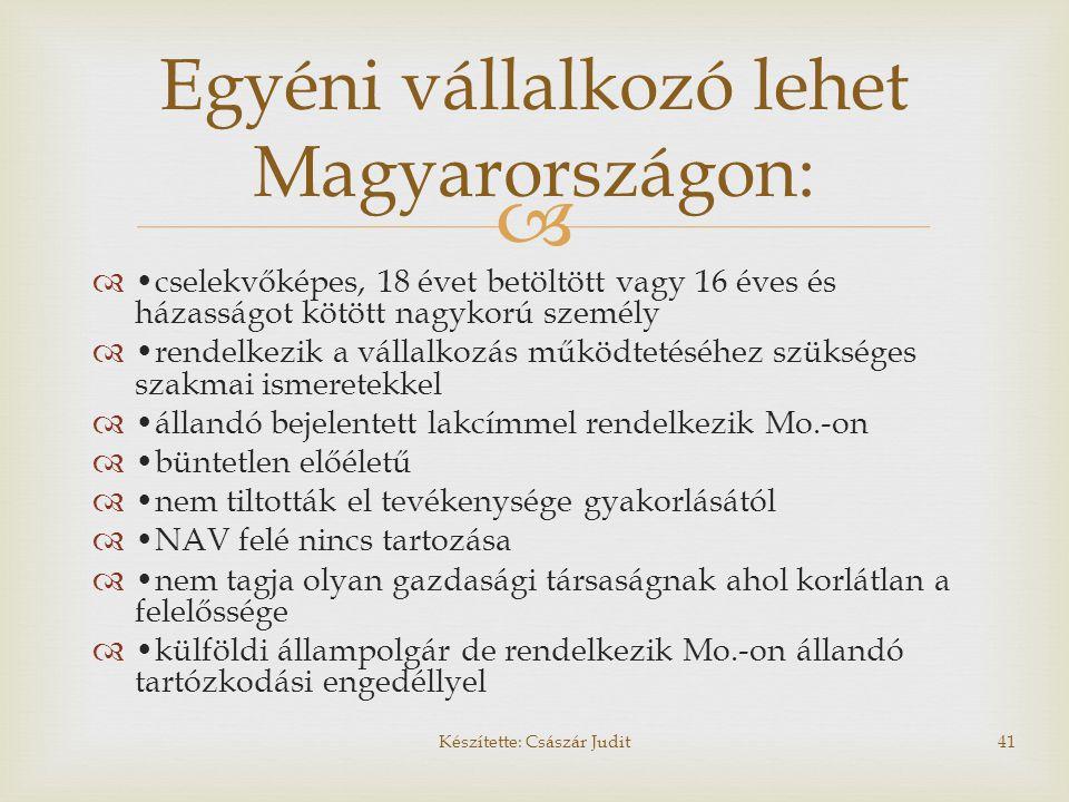 Egyéni vállalkozó lehet Magyarországon: