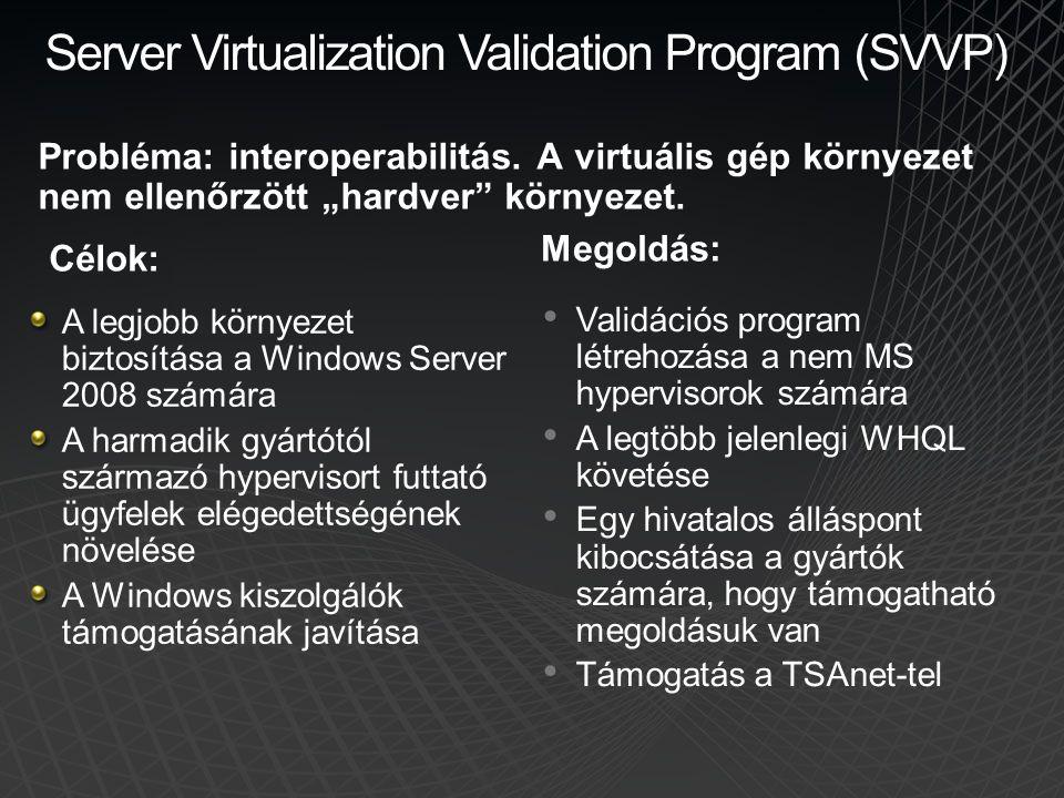 Server Virtualization Validation Program (SVVP)