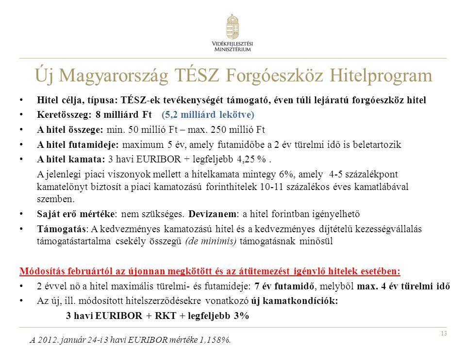 Új Magyarország TÉSZ Forgóeszköz Hitelprogram