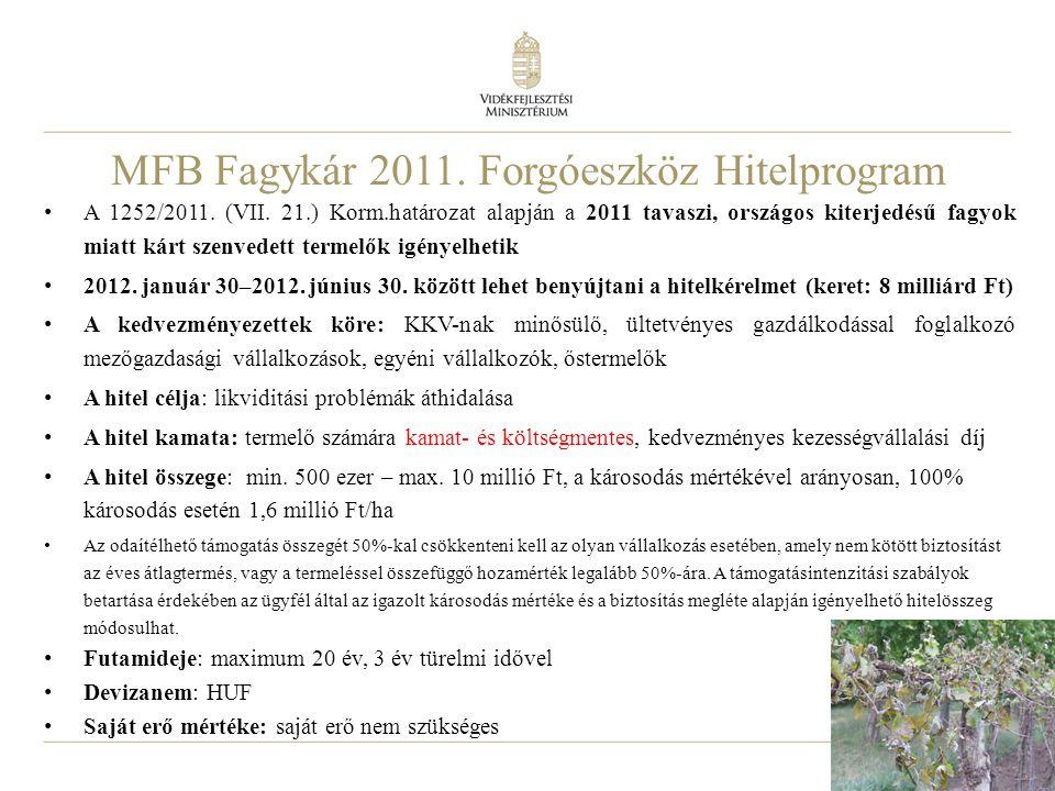 MFB Fagykár 2011. Forgóeszköz Hitelprogram