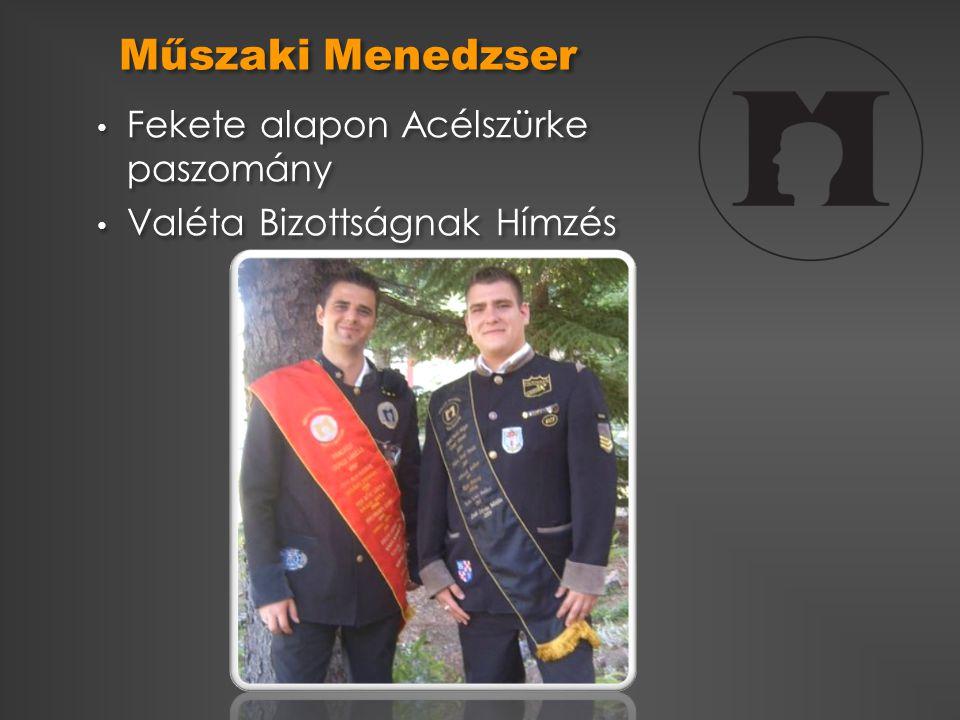Műszaki Menedzser Fekete alapon Acélszürke paszomány