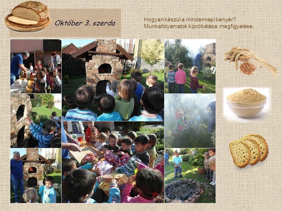 Október 3. szerda Hogyan készül a mindennapi kenyér