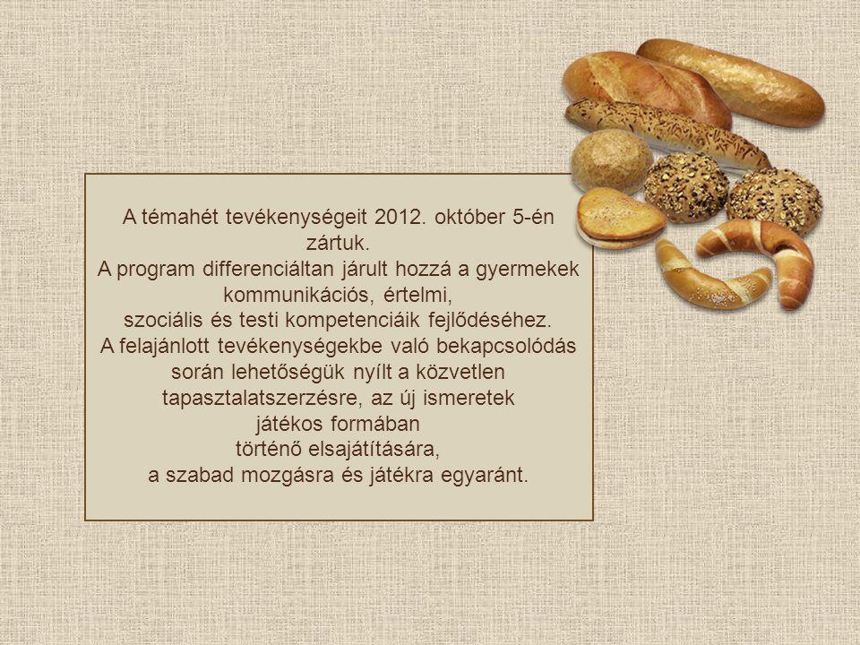A témahét tevékenységeit 2012. október 5-én zártuk.