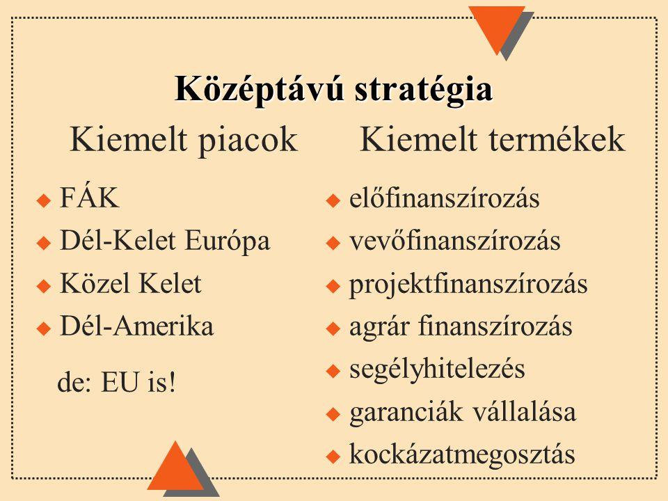 Középtávú stratégia Kiemelt piacok Kiemelt termékek FÁK