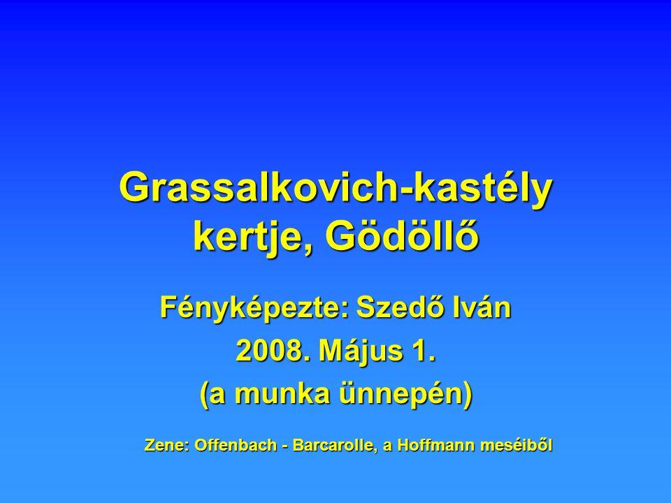 Grassalkovich-kastély kertje, Gödöllő