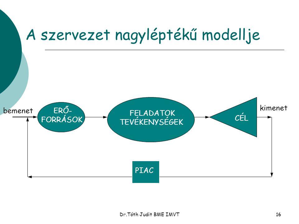 A szervezet nagyléptékű modellje