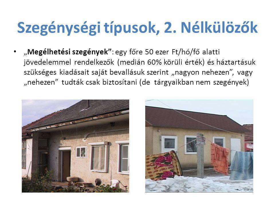 Szegénységi típusok, 2. Nélkülözők