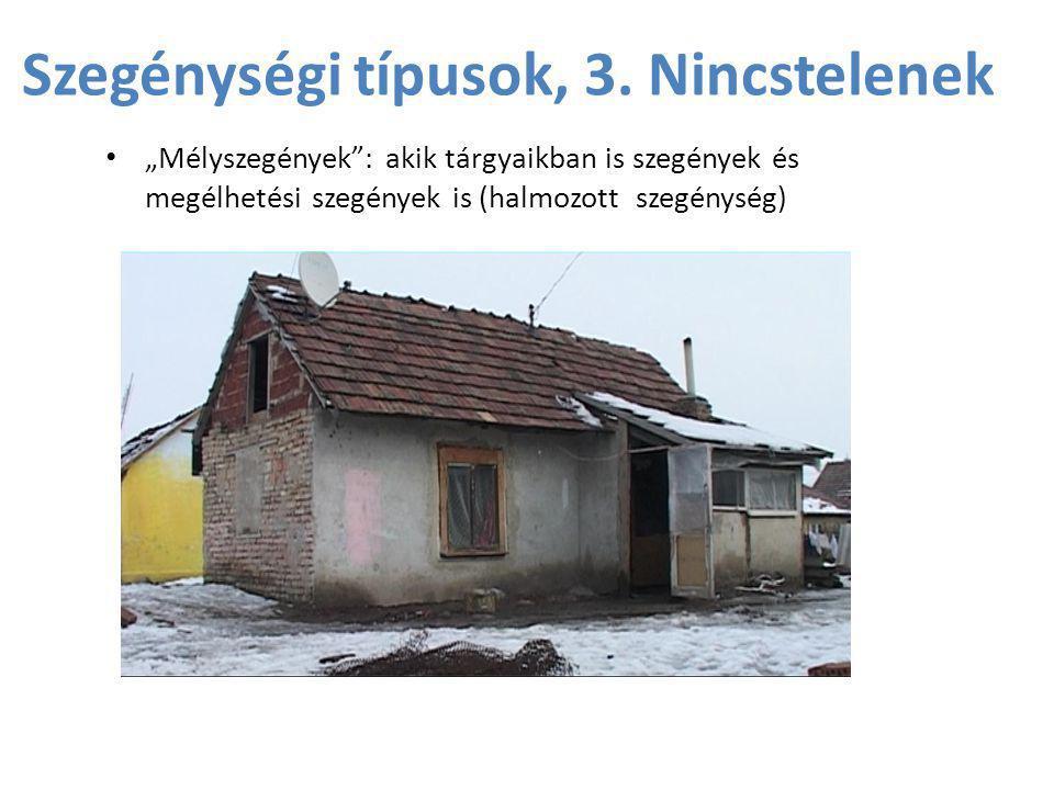 Szegénységi típusok, 3. Nincstelenek