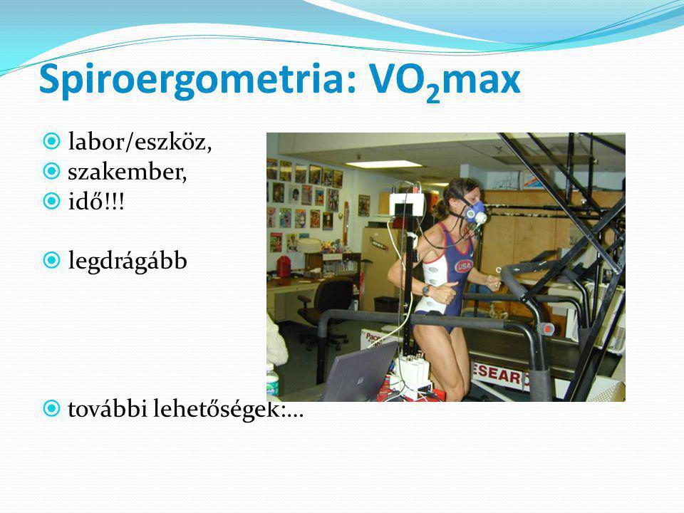 Spiroergometria: VO2max