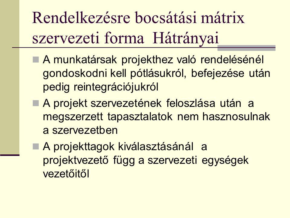 Rendelkezésre bocsátási mátrix szervezeti forma Hátrányai