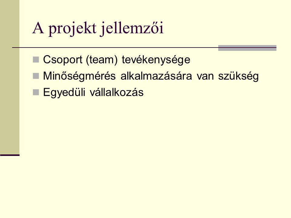 A projekt jellemzői Csoport (team) tevékenysége