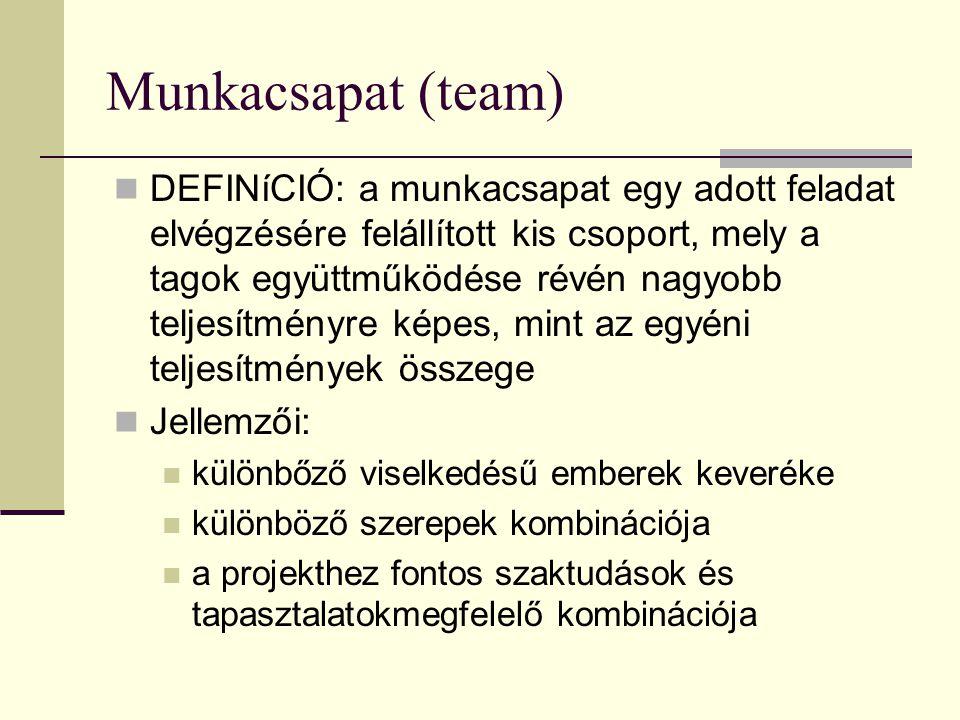Munkacsapat (team)