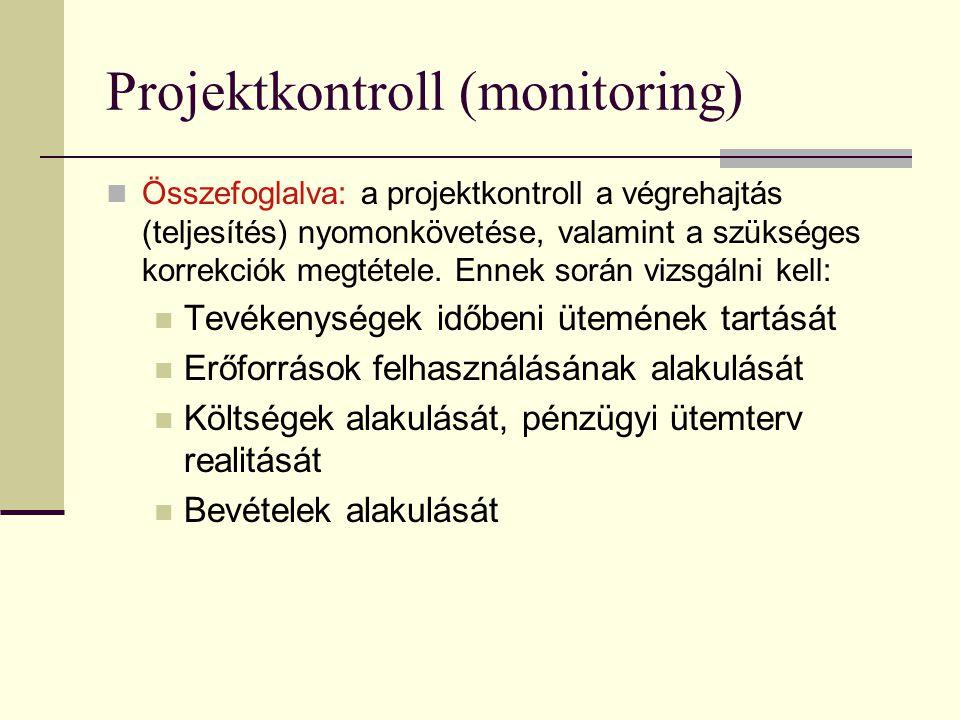 Projektkontroll (monitoring)