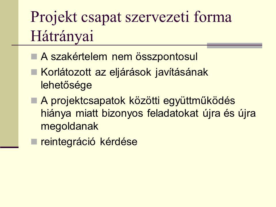 Projekt csapat szervezeti forma Hátrányai