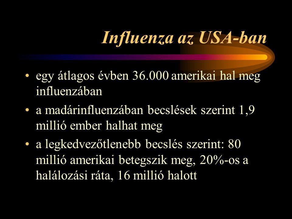 Influenza az USA-ban egy átlagos évben 36.000 amerikai hal meg influenzában. a madárinfluenzában becslések szerint 1,9 millió ember halhat meg.