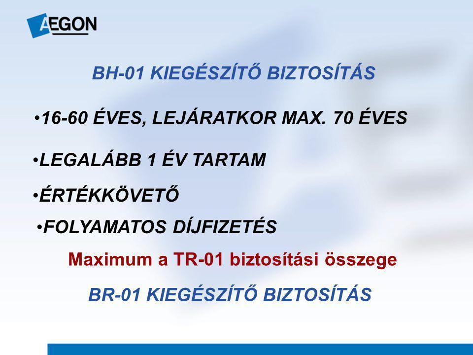 BH-01 KIEGÉSZÍTŐ BIZTOSÍTÁS