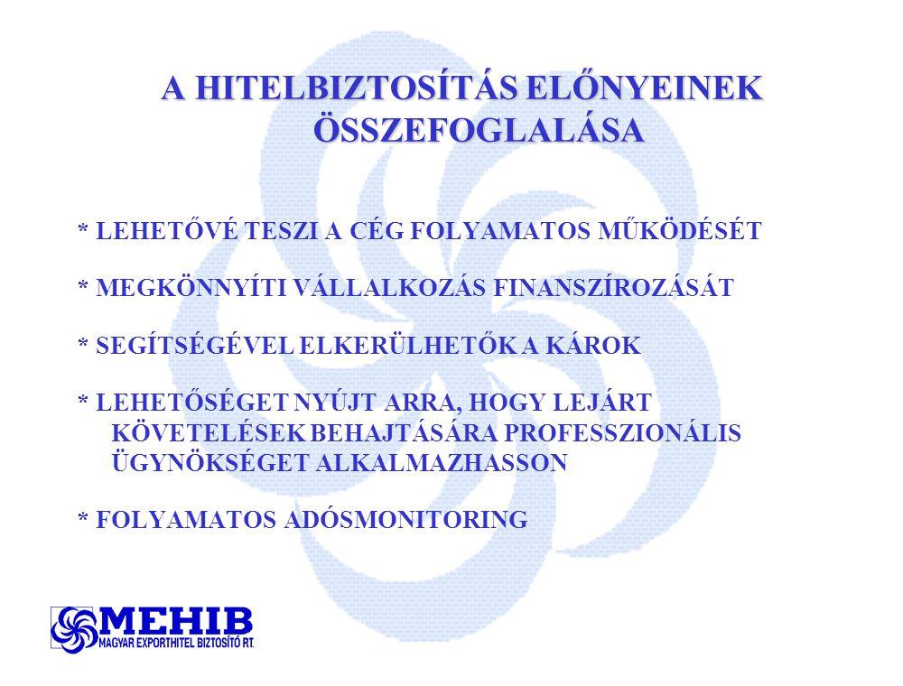 A HITELBIZTOSÍTÁS ELŐNYEINEK ÖSSZEFOGLALÁSA