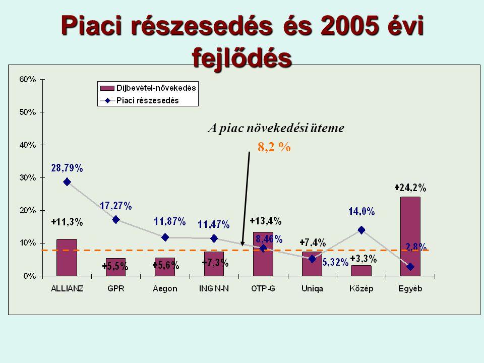 Piaci részesedés és 2005 évi fejlődés