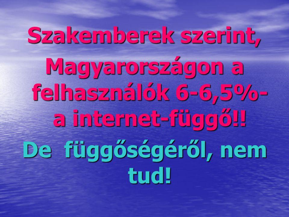 Magyarországon a felhasználók 6-6,5%-a internet-függő!!