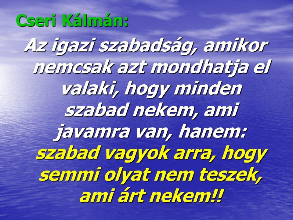 Cseri Kálmán: