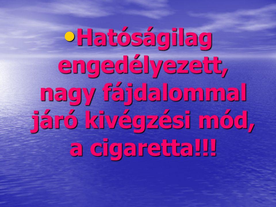Hatóságilag engedélyezett, nagy fájdalommal járó kivégzési mód, a cigaretta!!!