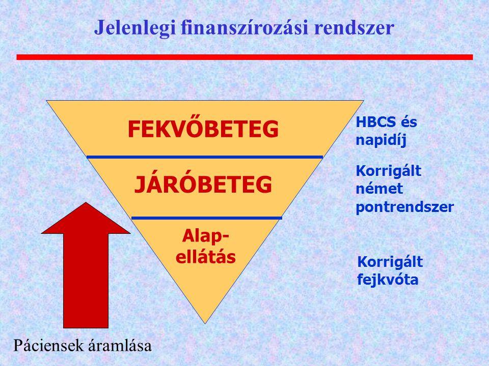 Jelenlegi finanszírozási rendszer
