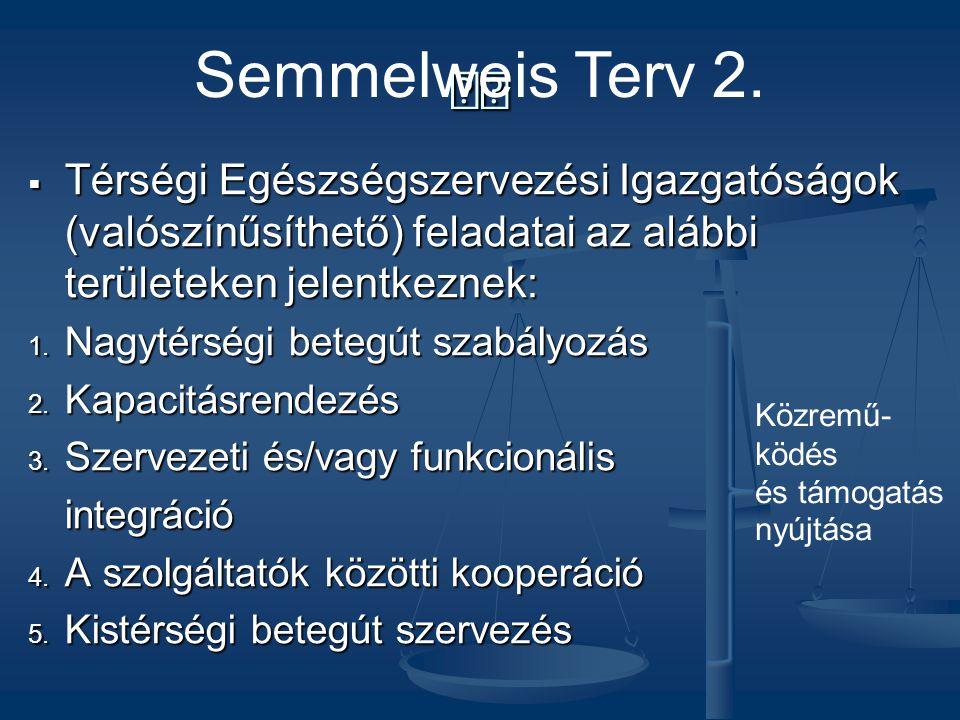 Semmelweis Terv 2.  Térségi Egészségszervezési Igazgatóságok (valószínűsíthető) feladatai az alábbi területeken jelentkeznek: