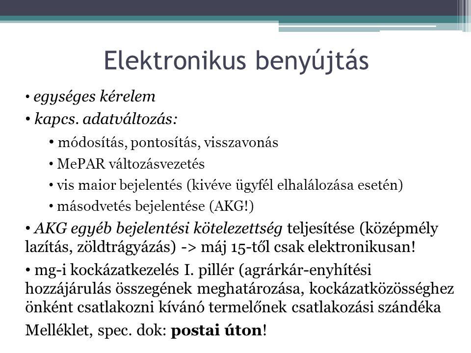 Elektronikus benyújtás