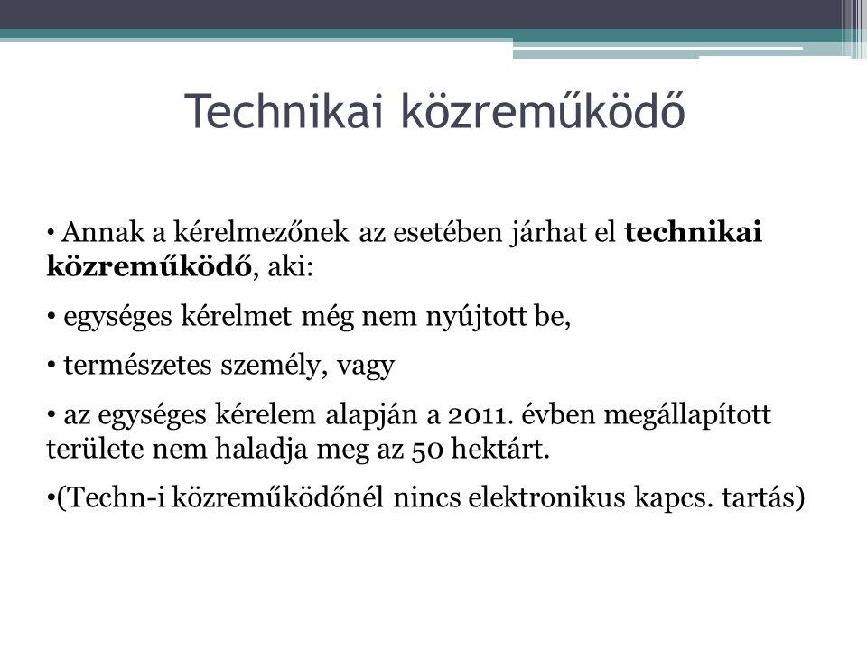 Technikai közreműködő