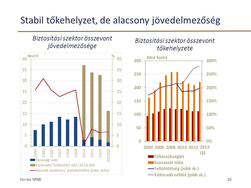 Stabil tőkehelyzet, de alacsony jövedelmezőség