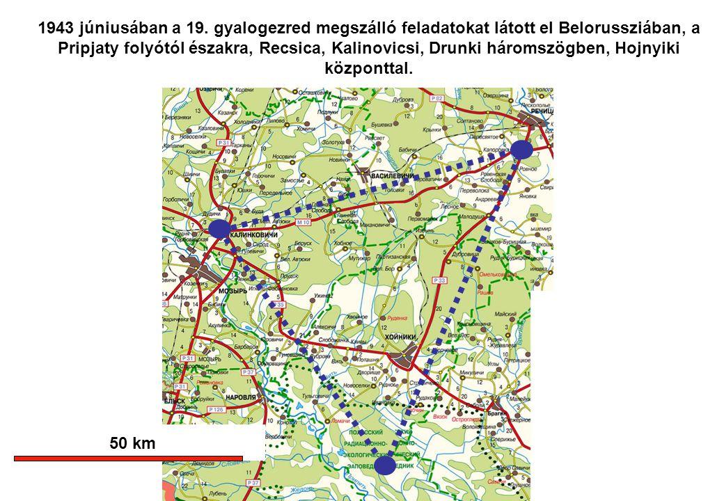 1943 júniusában a 19. gyalogezred megszálló feladatokat látott el Belorussziában, a Pripjaty folyótól északra, Recsica, Kalinovicsi, Drunki háromszögben, Hojnyiki központtal.