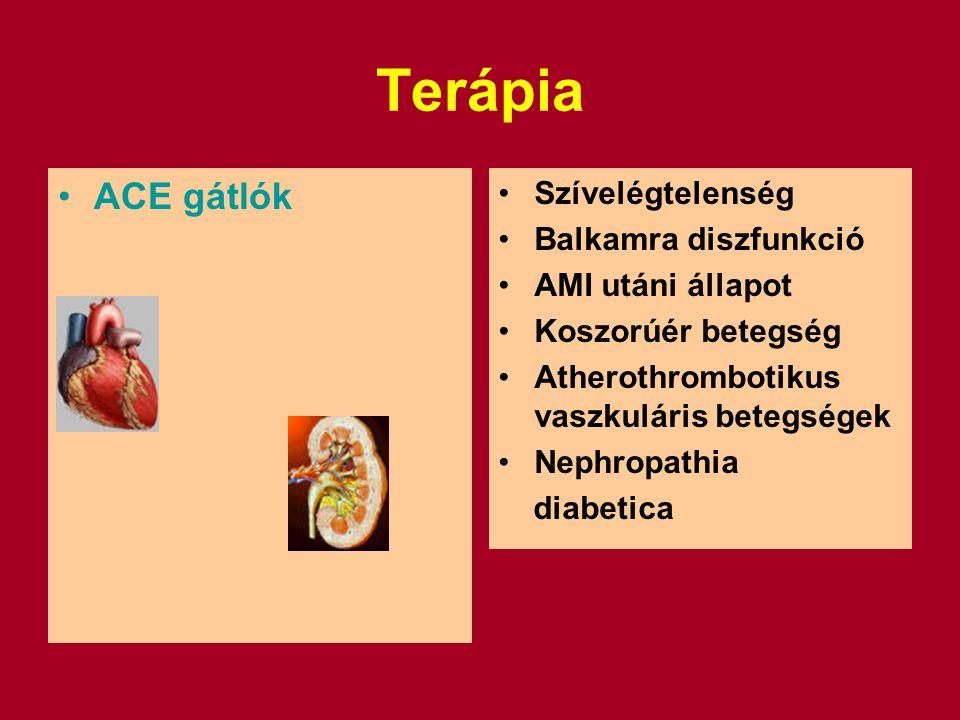 Terápia ACE gátlók Szívelégtelenség Balkamra diszfunkció