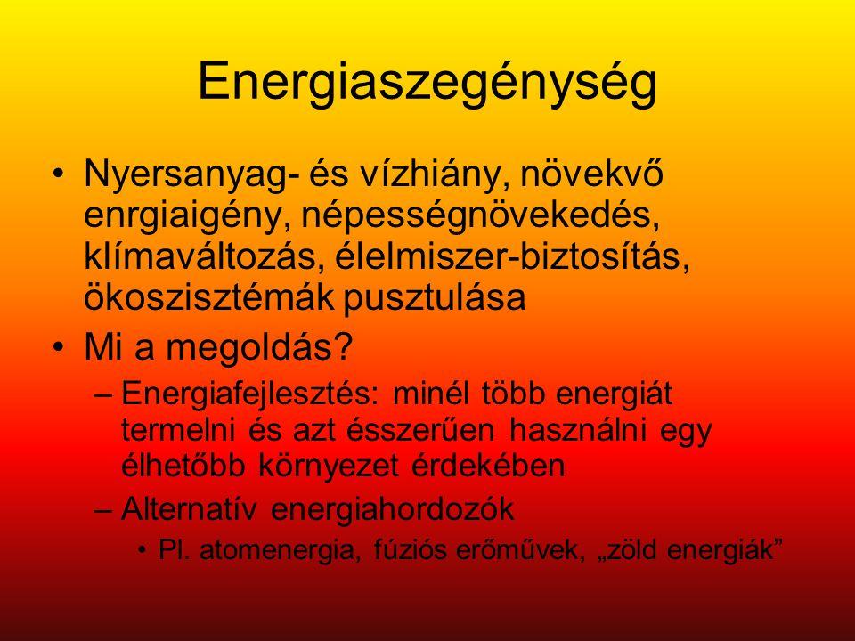 Energiaszegénység Nyersanyag- és vízhiány, növekvő enrgiaigény, népességnövekedés, klímaváltozás, élelmiszer-biztosítás, ökoszisztémák pusztulása.