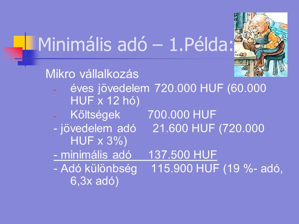Minimális adó – 1.Példa: Mikro vállalkozás