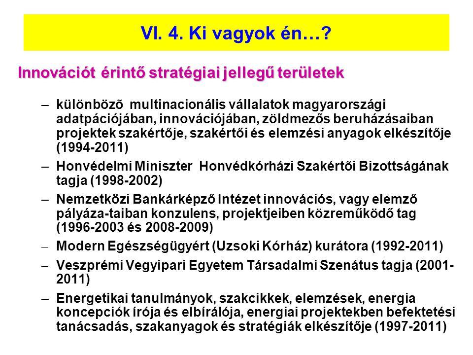 VI. 4. Ki vagyok én… Innovációt érintő stratégiai jellegű területek