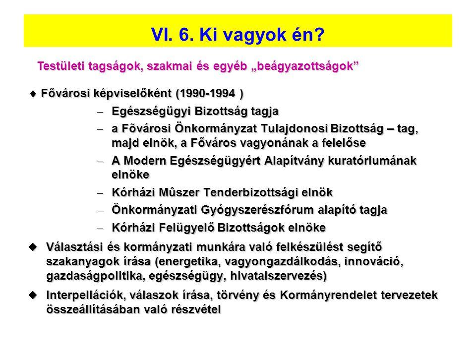 """VI. 6. Ki vagyok én Testületi tagságok, szakmai és egyéb """"beágyazottságok  Fővárosi képviselőként (1990-1994 )"""