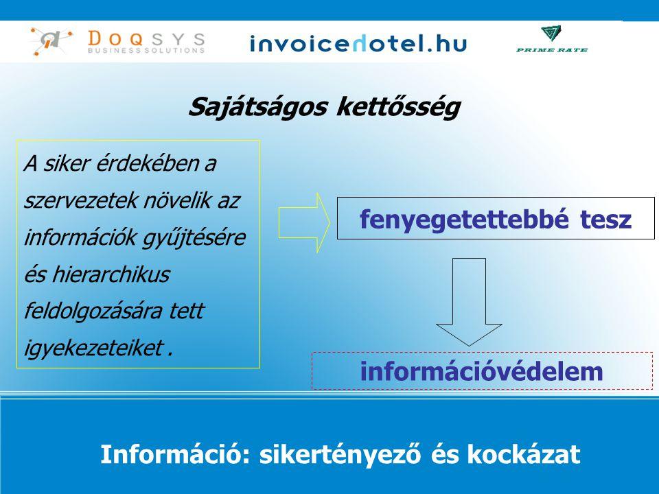 Információ: sikertényező és kockázat