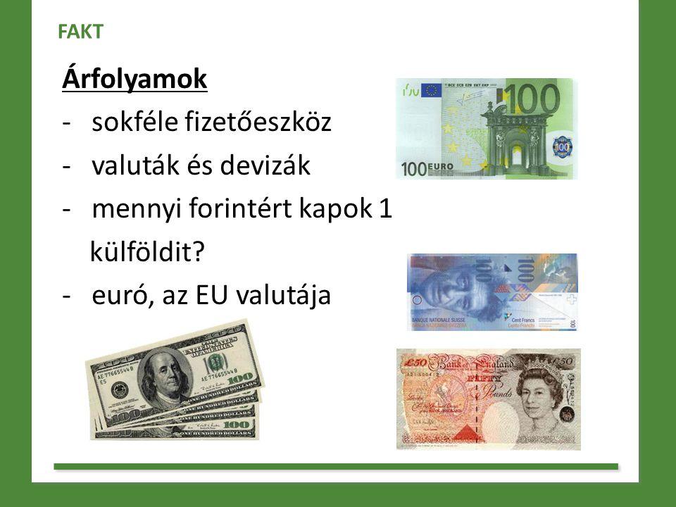 mennyi forintért kapok 1 külföldit - euró, az EU valutája