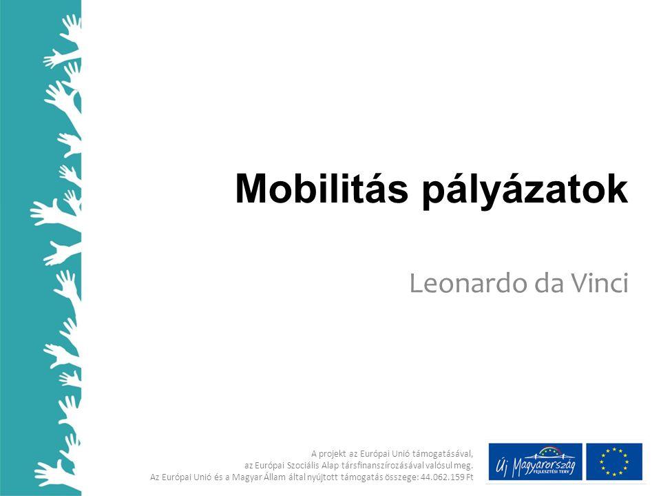 Mobilitás pályázatok Leonardo da Vinci