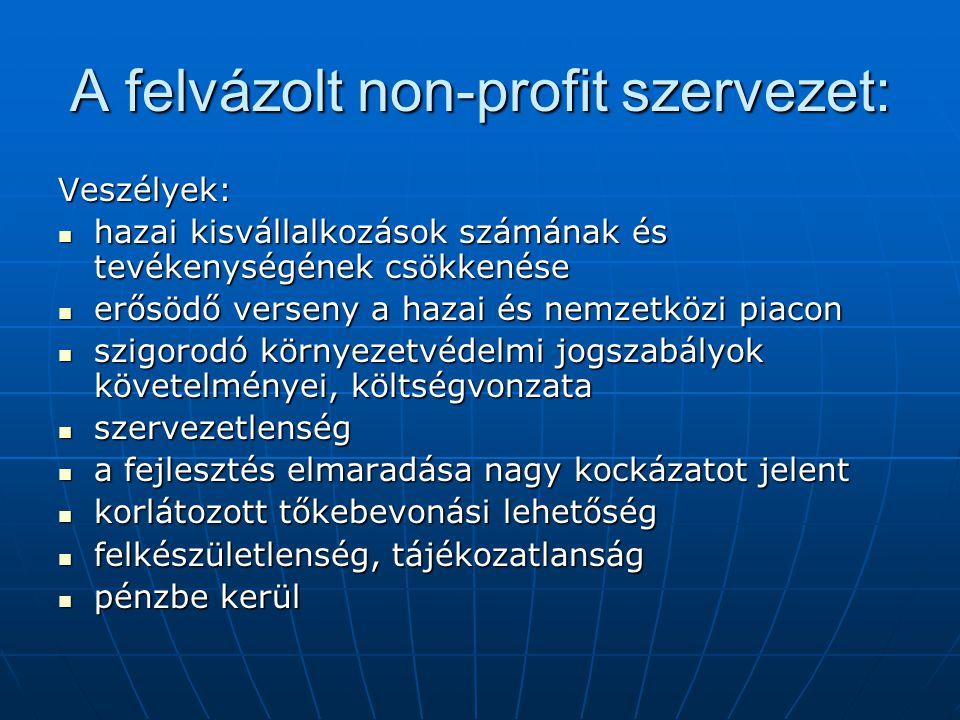 A felvázolt non-profit szervezet: