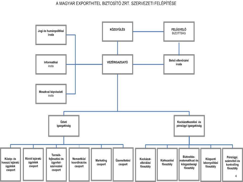 Szervezeti struktúra