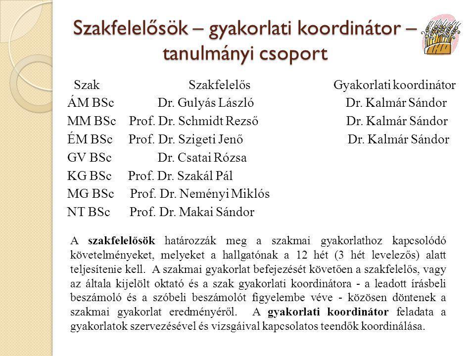 Szakfelelősök – gyakorlati koordinátor – tanulmányi csoport