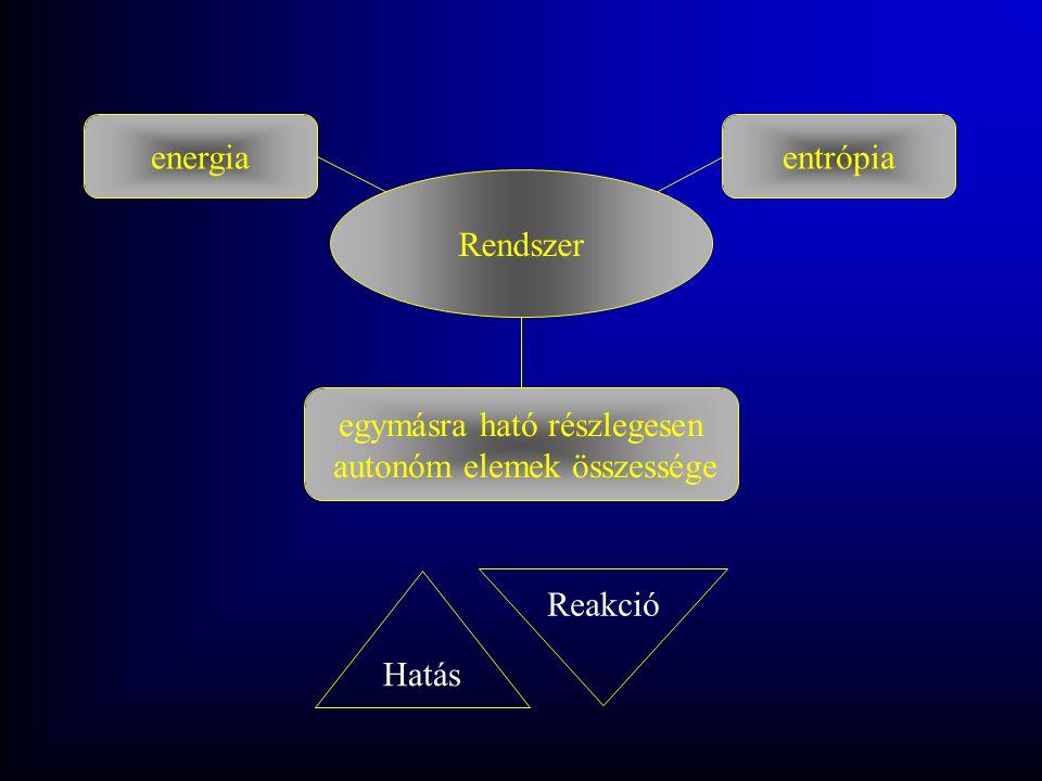 egymásra ható részlegesen autonóm elemek összessége